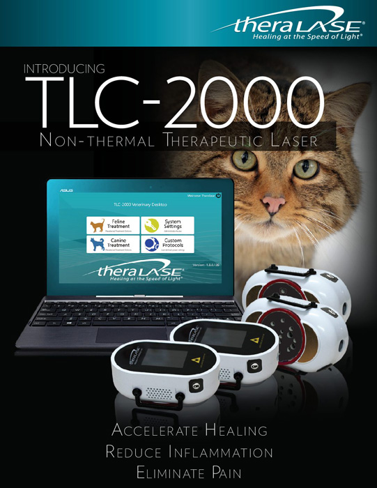 TLC-2000 non-thermal therapeutic laser